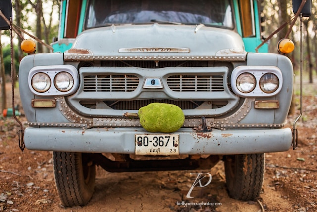 2016-thailand-jackfruit-farm-54-web